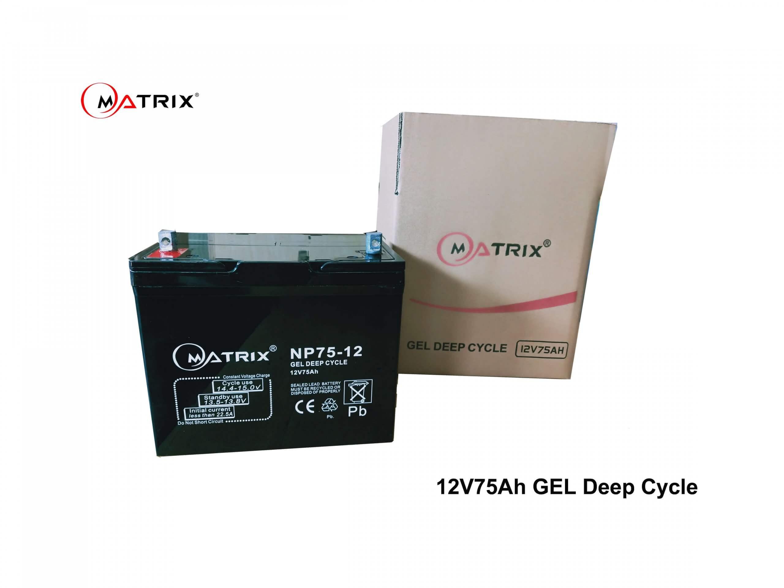 75AH Lead GEL Deep Cycle Battery-packed